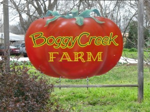 Boggy Creek Farms in East Austin