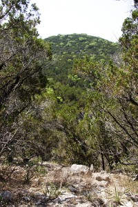 Mt. Lucas in West Austin