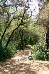 Bright Leaf Trail Head in West Austin
